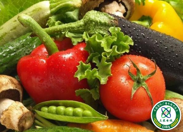 蔬菜天天吃,教你如何選購時令蔬菜?