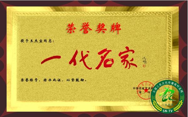 """羲之文化传承人王杰宝获""""一代名家""""荣誉称号"""